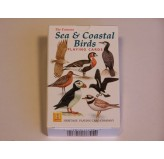 Heritage Playing Cards - Sea & Coastal Birds