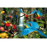 1000pc Play NOW! Jigsaw Puzzle - Parrots