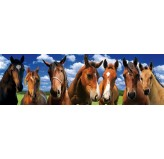 120 piece PANORAMA Jigsaw Puzzle - Horses