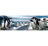 120 piece PANORAMA Jigsaw Puzzle - Penguins