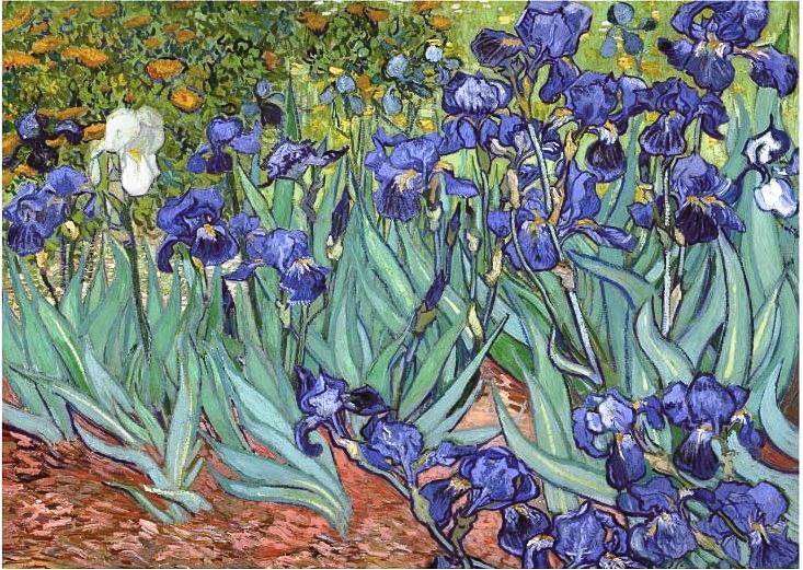 1000pc Jigsaw - Irises (Made From High Quality European Blue Board)