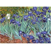 Enigma Brand 1000pc Jigsaw - Irises  (Made From 100% High Quality European Blue Board From Holland)