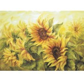 Enigma Brand 1000pc Jigsaw - Sunflowers (Made From High Quality European Blue Board)