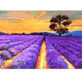 1000pc Jigsaw  - Romantic Lavender (Made From High Quality European Blue Board)