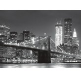 Enigma Brand 1000pc Jigsaw - The Brooklyn Bridge  (Made From 100% High Quality European Blue Board From Holland)