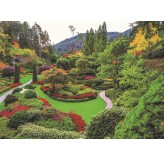 Enigma Brand 1000pc Jigsaw - Butchart Garden Vancouver Island  (Made From 100% High Quality European Blue Board From Holland)